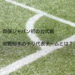 サッカー芝生