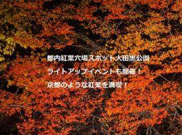 大田黒公園紅葉